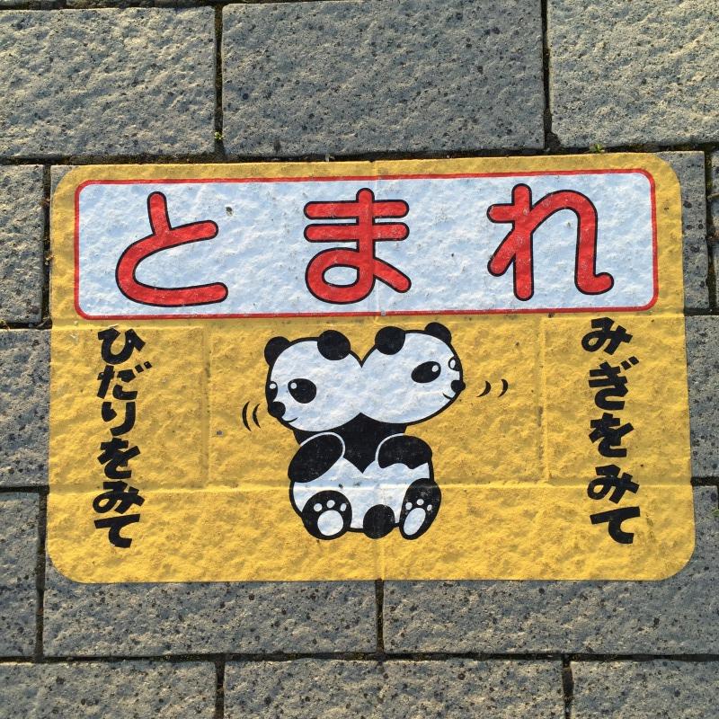 パンダの開き