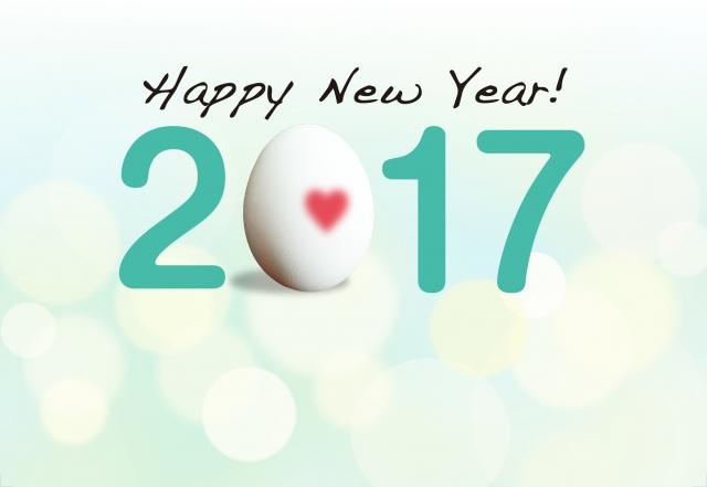 HappyNewYear 2017!