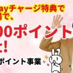 【キャッシュレス】マイナポイントで5000円ゲット! PayPayならその場でもらえる!